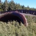 Náter dreveného opláštenia mosta pre NDS